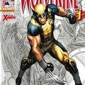 Wolverine v3 2012-2013