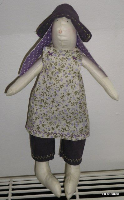 Lapin violet (3)