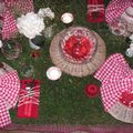 table picnic 013