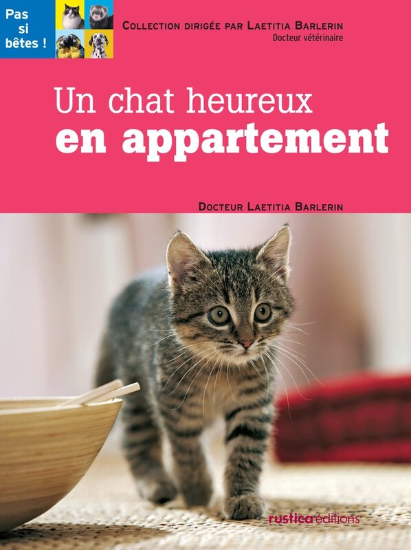 chat-heureux-appartement