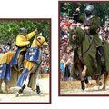 chevaliers4