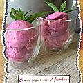 Frozen yogurt coco/ framboise ( 113 cal/ par personne)