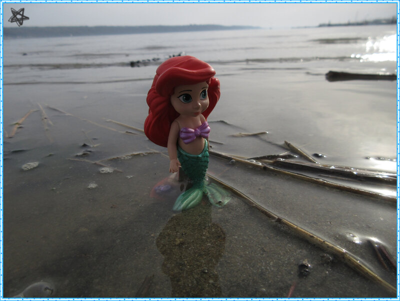 the little mermaid (1)