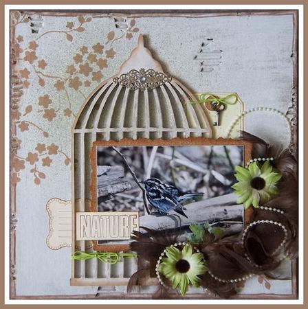 cage___oiseau