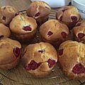 Muffins aux framboises au companion (ou pas)