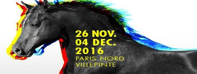 Bannière Salon du Cheval 2016