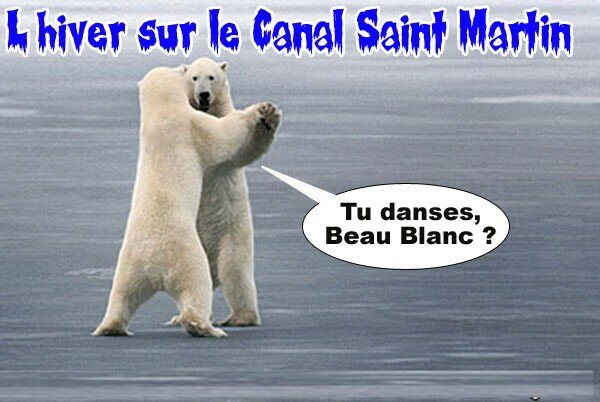 ours blanc 2