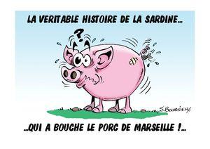 cochon coul