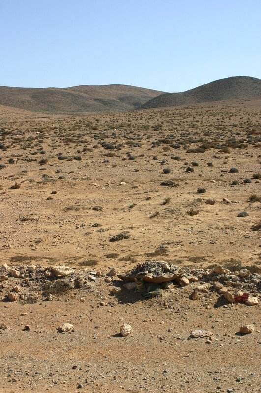 Route sud Sidi-Ifni et déjeuner bord mer (5)