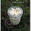 Cottage cheese maison au cook'in®