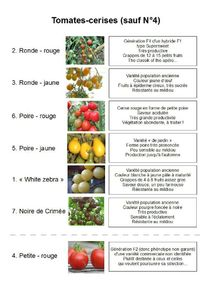 descriptif tomates