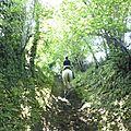 balade à cheval médiévale - Abbaye de Hambye (19)
