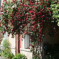 Promenade olfactive à chédigny village-jardin...