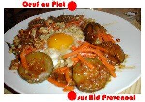 blog_nid_sur_le_plat