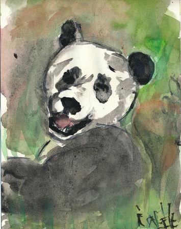 Isabelle_panda