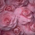 Des brassées de fleurs pour t'accompagner...
