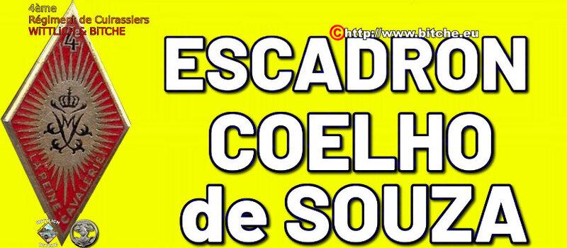 - PANNEAU d' ESCADRON CAPiTAiNE COELHO de SOUZA