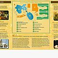 Secret Garden and Dophin Habitat the Mirage Las Vegas (2).jpg