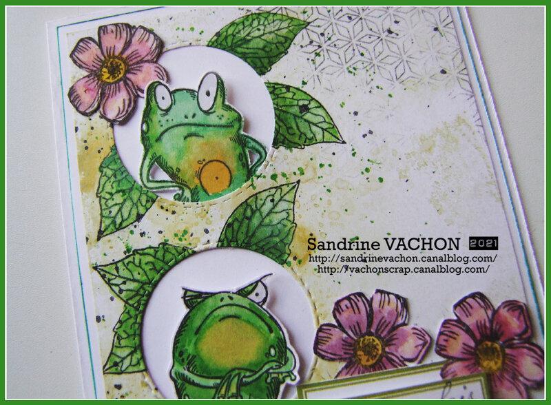 Sandrine VACHON 681 PCC (2)