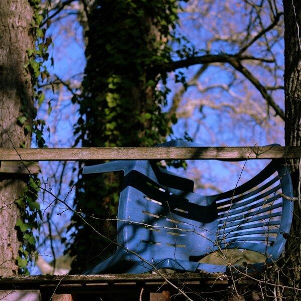 une chaise dans les arbres