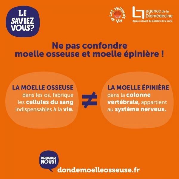 kits_vv_403x403-ne_pas_confondre_moelle_osseuse_et_moelle_epiniere