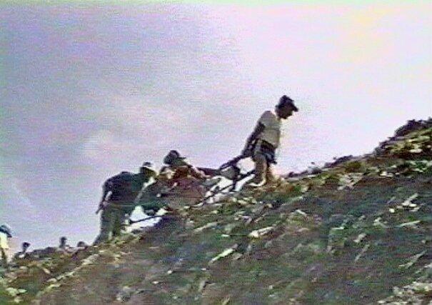 grimpée