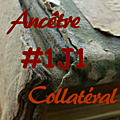 #1j1ancetre - #1j1collateral - 11 juillet