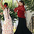Danses Sévillanes 21 juillet 2013 (35) [Résolution de l'écran]