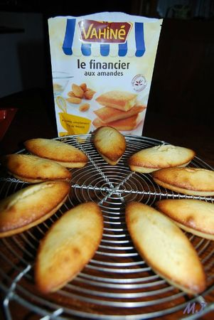 LE FINANCIER AUX AMANDES