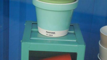 Pantone 016