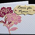 MINI-CARTES