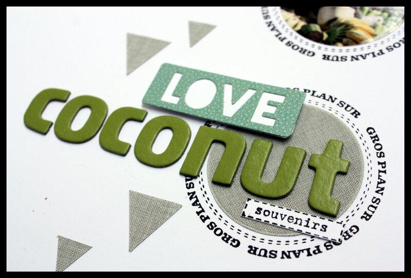 coconuts 1b