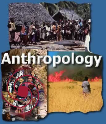 anthropology social sciences