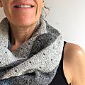 3 color cashmere cowl pour un défi en gris