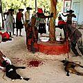 Comment se déroule la cérémonie d'un rituel vaudou commander