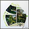 Le jardin de mimou en 2019