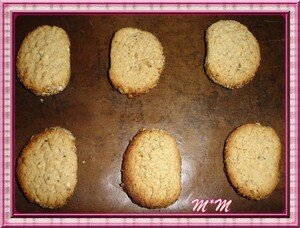 biscuits_aux__pices20_11_06_021