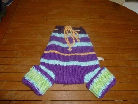 AAm 2012 Panty violet rayé béatrice vue culotte