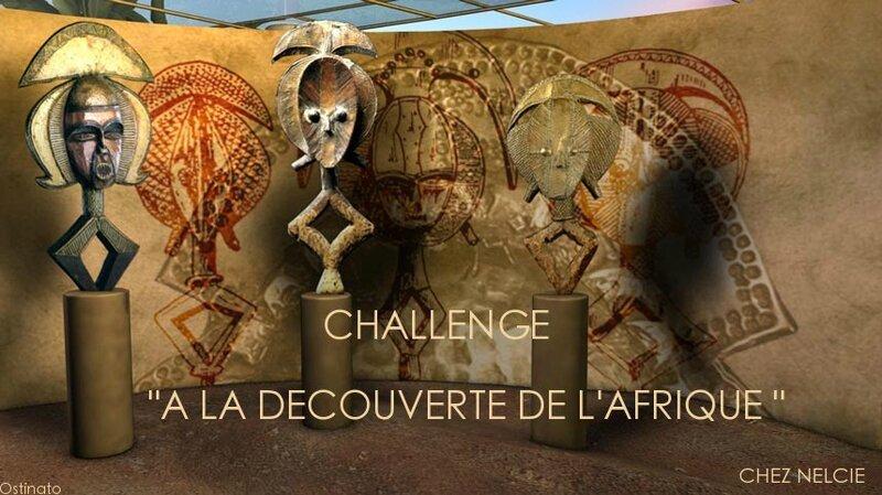 A la découverte de l'afrique