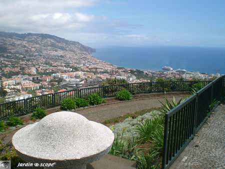 8837_Funchal_de_Pico_dos_Barcelos
