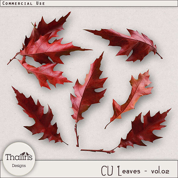 THLD-CU-leaves-vol2-pv600