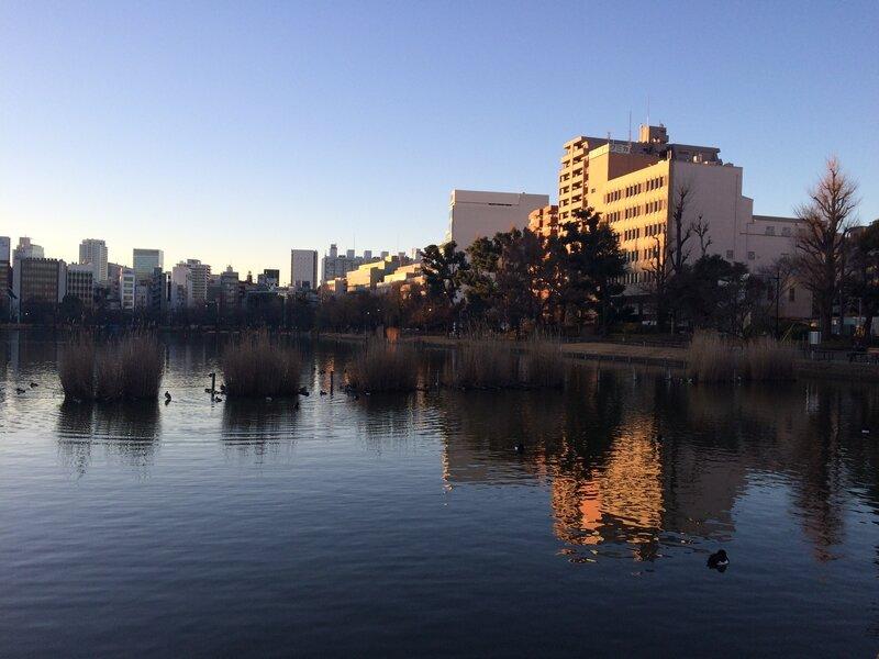 étang du parc d'Ueno