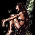 fairy242