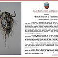 Béziers - toros y flamencos