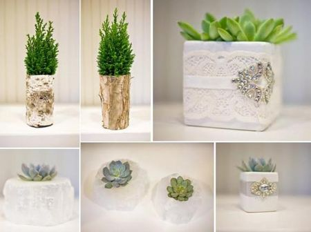 eco_friendly_couture_wedding_decor_lush_green_trees_birch_wood_white_quartz_succulents_lace_rhinestone_brooch