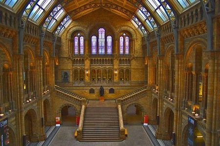 014-natural-history-museum-london