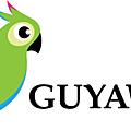 Guyaweb: l'exemple du pure player à la guyanaise
