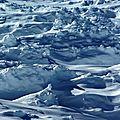 Dans l'avalanche (1)
