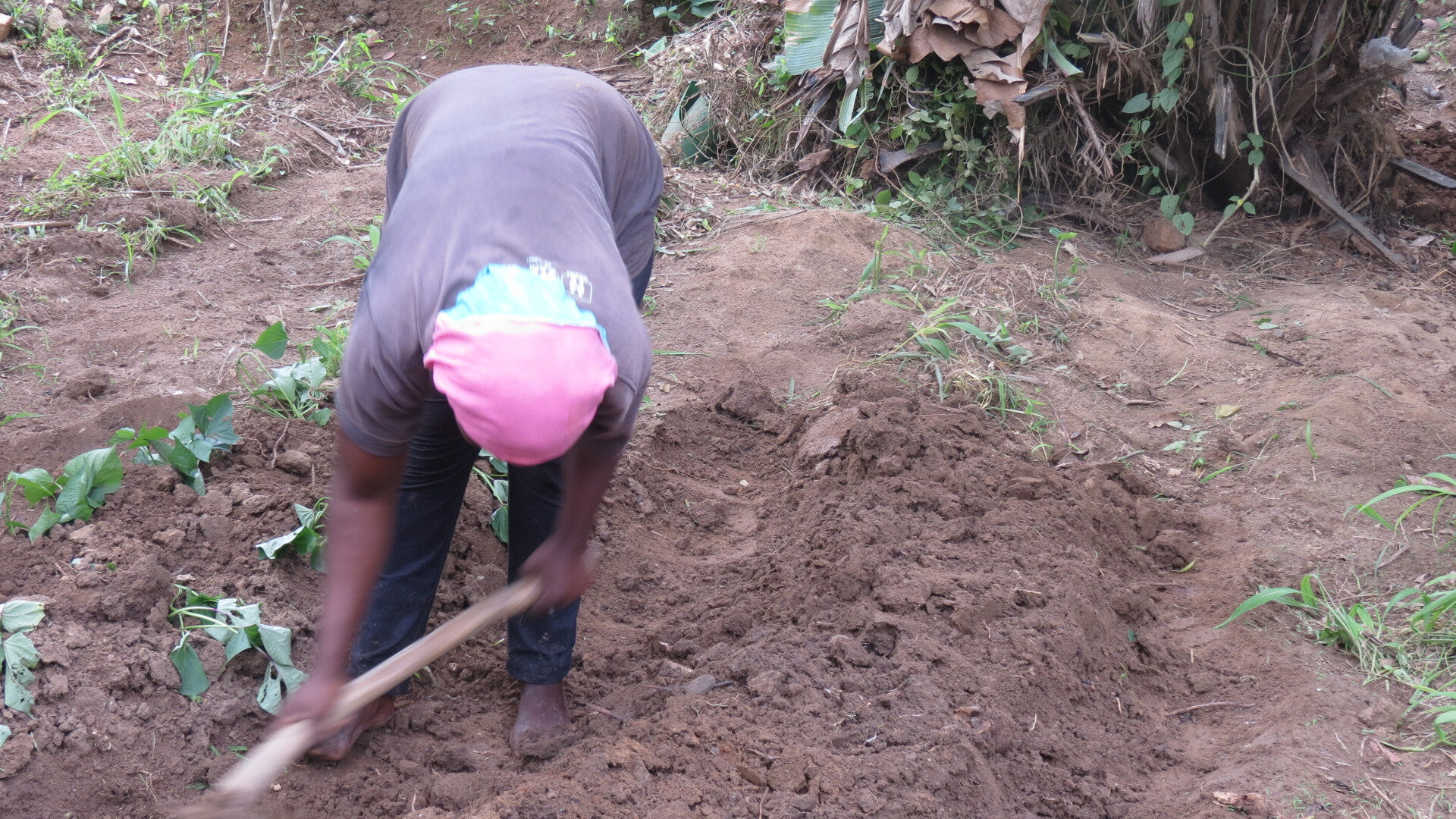 Cameroun: Financement des CVA