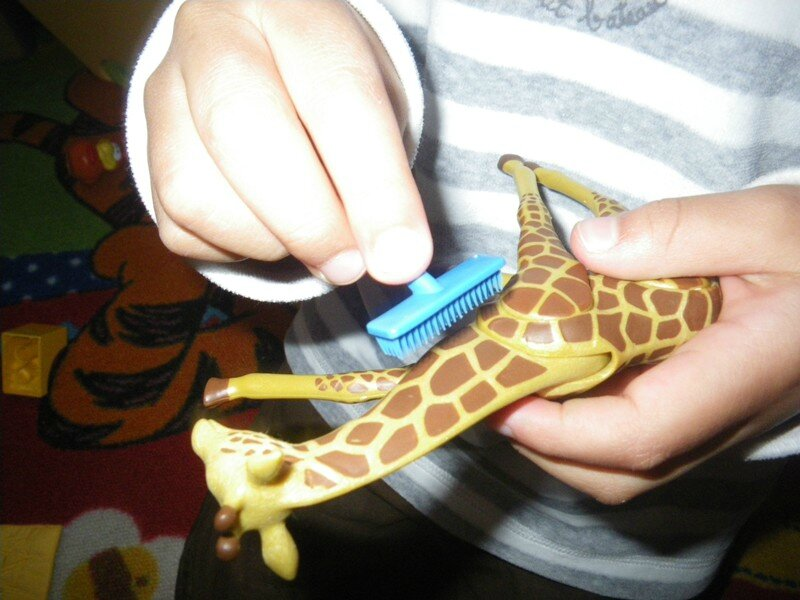 Girafe etc 003